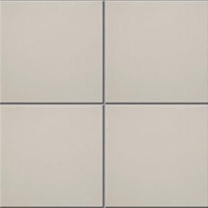 Ivory Field Encaustic Tiles