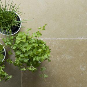 Umbria Limestone Tumbled Finish with plants